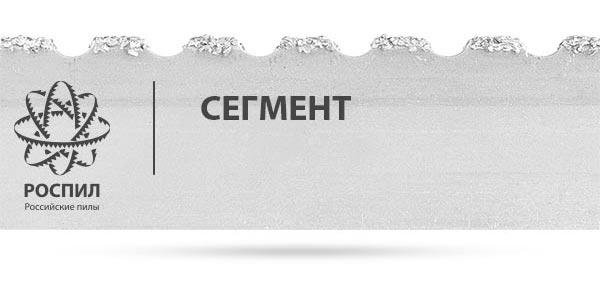 РОСПИЛ СЕГМЕНТ