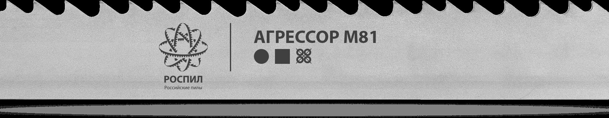 РОСПИЛ Агрессор M81