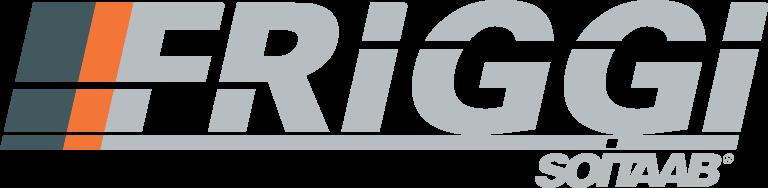 Friggi logo